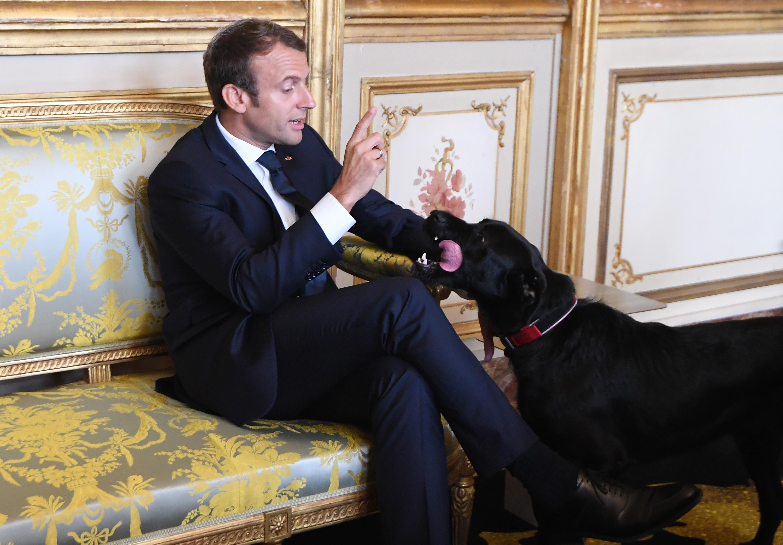 Macron ... En Marche...! - Page : 53 - Actualité auto - FORUM Auto Journal