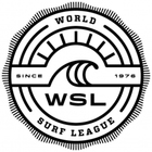 World Surf Series