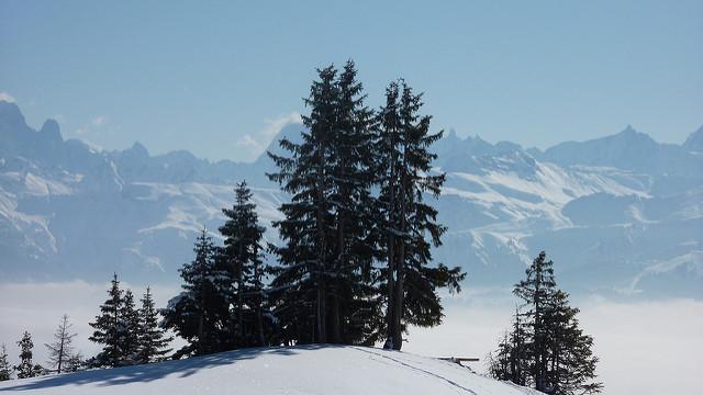 Une skieuse de fond meurt écrasée par une dameuse — Haute-Savoie