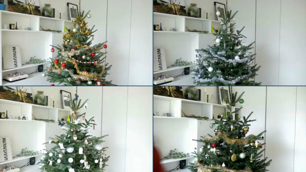 EN VIDEO - Scandinave, exotique, spatiale ou kitch. 4 tendances déco pour votre sapin de Noël