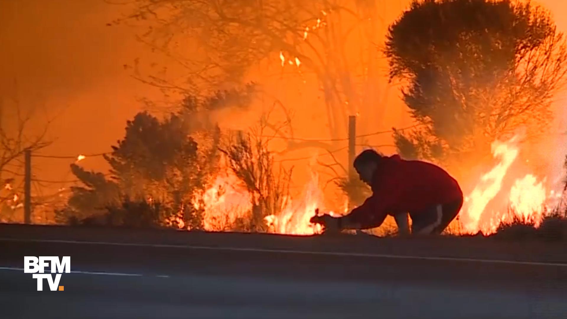EN VIDEO - En Californie, cet homme sauve un lapin des flammes