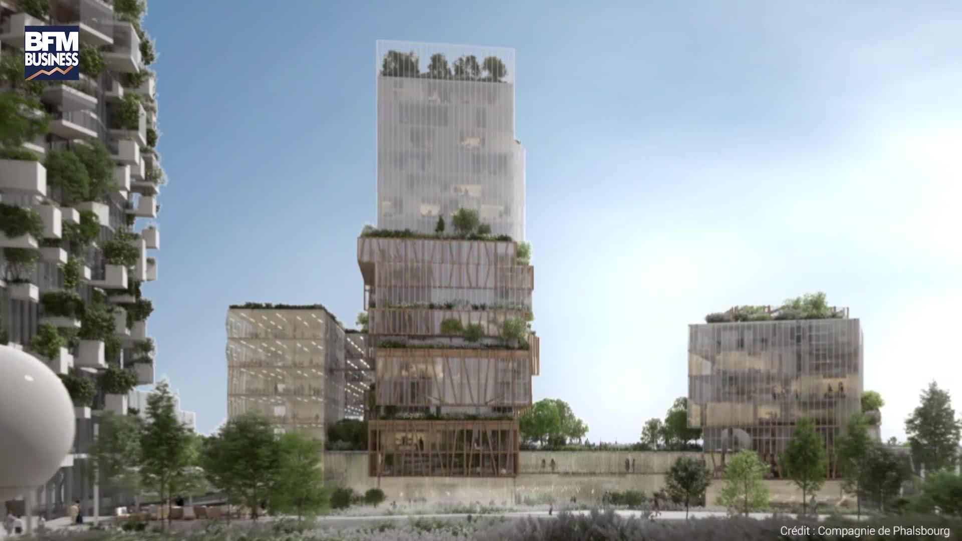 EN VIDEO - Une forêt verticale en banlieue parisienne