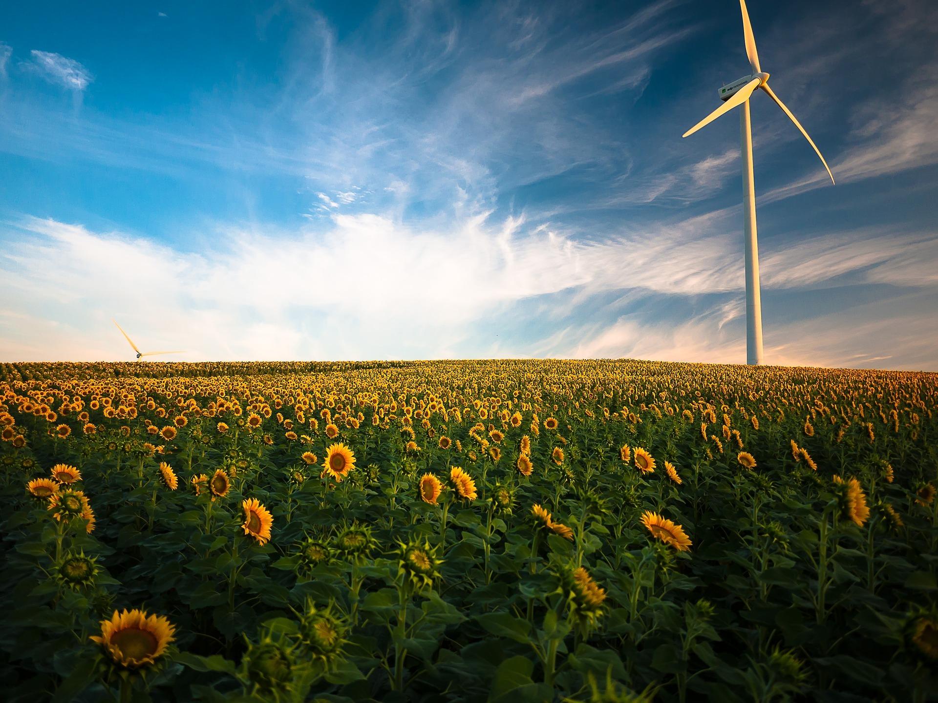 Energie verte, éolienne