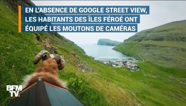EN VIDEO - Avec un peu d'humour et quelques moutons, les Îles Féroé défient Google
