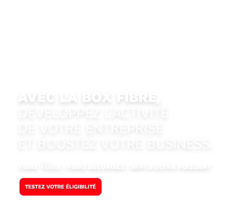 Box fibre sfr business